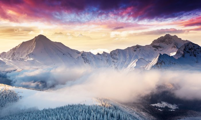 Fantastic evening landscape in the Swiss Alps. (*Shutterstock)