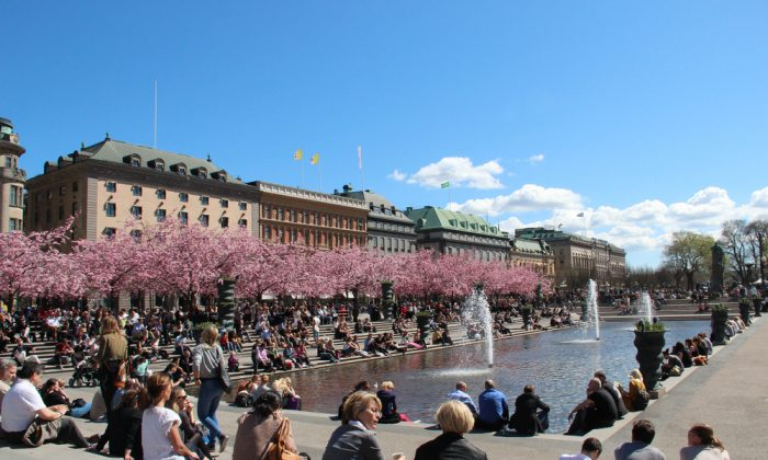 Stockholm, Sweden: people relaxing in the sun by a pond and blossoming cherry trees. (*Shutterstock)