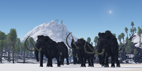 Illustration of woolly mammoths. (Shutterstock*)
