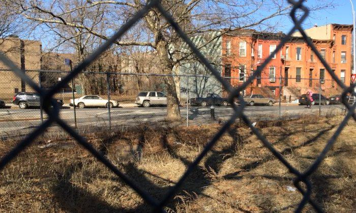 A vacant lot in Bedford-Stuyvesant, Brooklyn, New York, Feb. 28, 2014. (Matt Gnaizda)