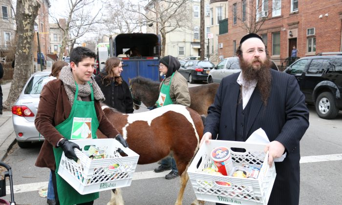 Alexander Rapaport and Masbia Soup Kitchen staff collect donated food items from Brooklyn residents in the neighborhood of Borough Park, March 14, 2014. (Allen Xie)