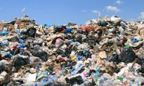 Company to Convert Landfill's Methane Gas Into Electricity