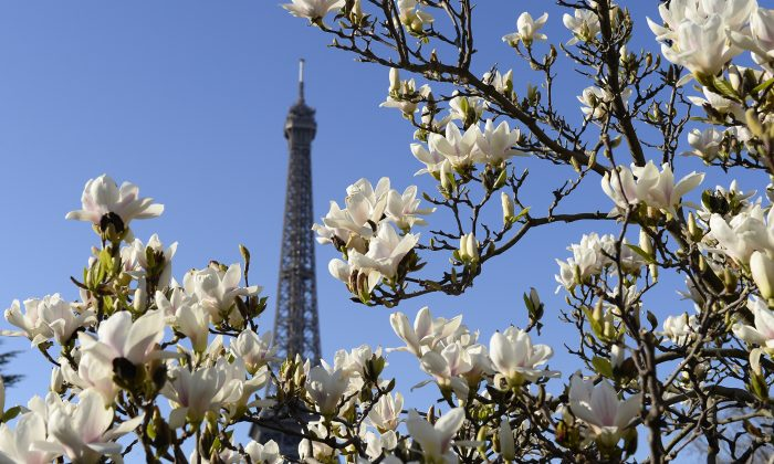 The Eiffel Tower in Paris on March. (Photo credit ALAIN JOCARD/AFP/Getty Images)