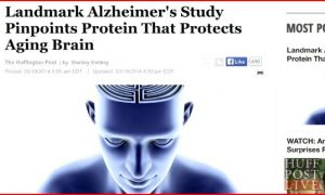 Landmark Alzheimer's Study Pinpoints Protein That Protects Aging Brain