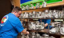 Legislators Debate Uneven Marijuana Laws