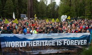 Australians Rally to Save World Heritage Site