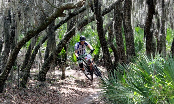 A few hundred riders spent Sunday weaving through trees and plunging down—and then back up—steep slopes to raise funds for the Friends of Alafia in the fourth Red Trails Alafia Classic. (Chris Jasurek/Epoch Times)