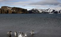 Antarctica Was Once as Warm as California
