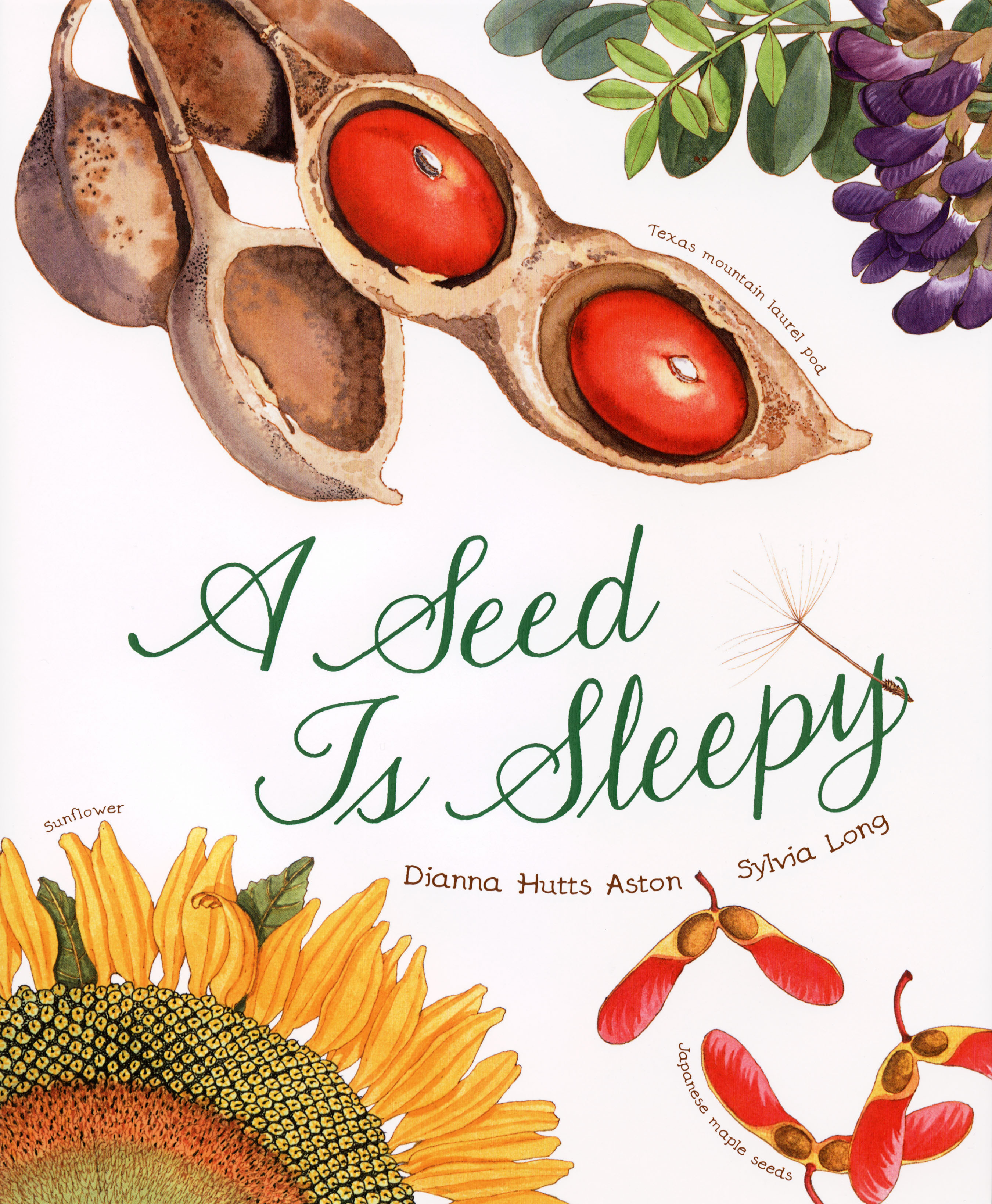"""A Seed Is Sleepy"" by Dianna Hutts Aston and Sylvia Long"