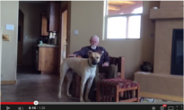 Her Father Has Alzheimer's, But When He Is With The Dog, This Magic Happens (Moving Video)