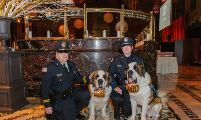 Lt. William Gordon (L) and Officer Laura Gordon (R) with their Saint Bernards Rosie and Clarence, at the Animal Medical Center Top Dog Award Gala, Dec. 2013. (Photo courtesy of Lt. William Gordon)