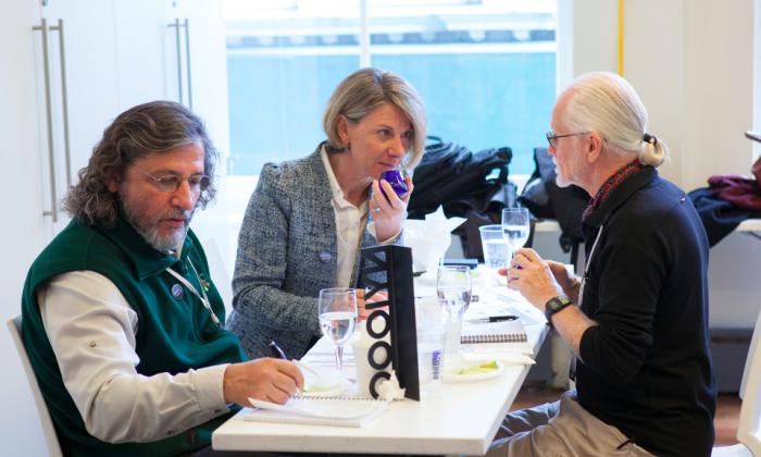 Judges sampled over 650 samples of olive oil over four days. (Samira Bouaou/Epoch Times)