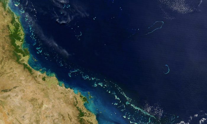 A satellite image of the Great Barrier Reef. (HO/AFP/Getty Images)
