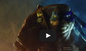 Teenage Mutant Ninja Turtles Star Megan Fox 'In Love' With the Cartoon But Fans Will Decide Fate of Film