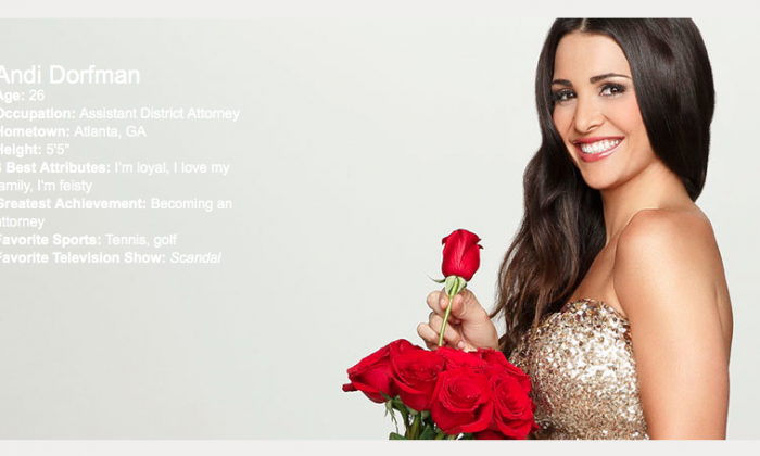 A screenshot of The Bachelorette 2014 profile page for Andi Dorfman. (ABC)