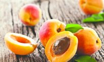 Ancient Stories: Healing Apricots