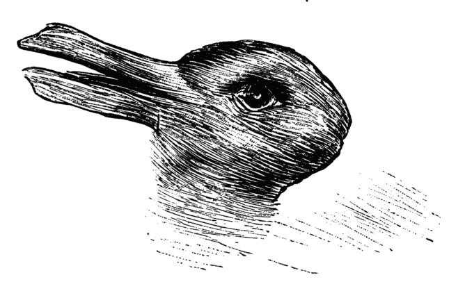Rabbit or duck, it's all in the eyes. (Wikimedia, CC BY)