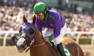 Kentucky Derby 2014: Contenders, Odds, Date, and Time (+TV, Live Stream Info)