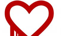 Heart Bleed Bug Test: Facebook, Yahoo, Gmail, YouTube, Paypal, Wells Fargo, Chase, Citibank, eBay Affected by the Heartbleed Problem?