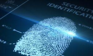 Law Enforcement Myth Exposed: Fingerprints Are Not Unique