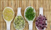 Sprout Your Way to Better Health