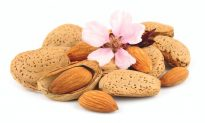 New Studies Show Health Benefits of Almonds (Video)