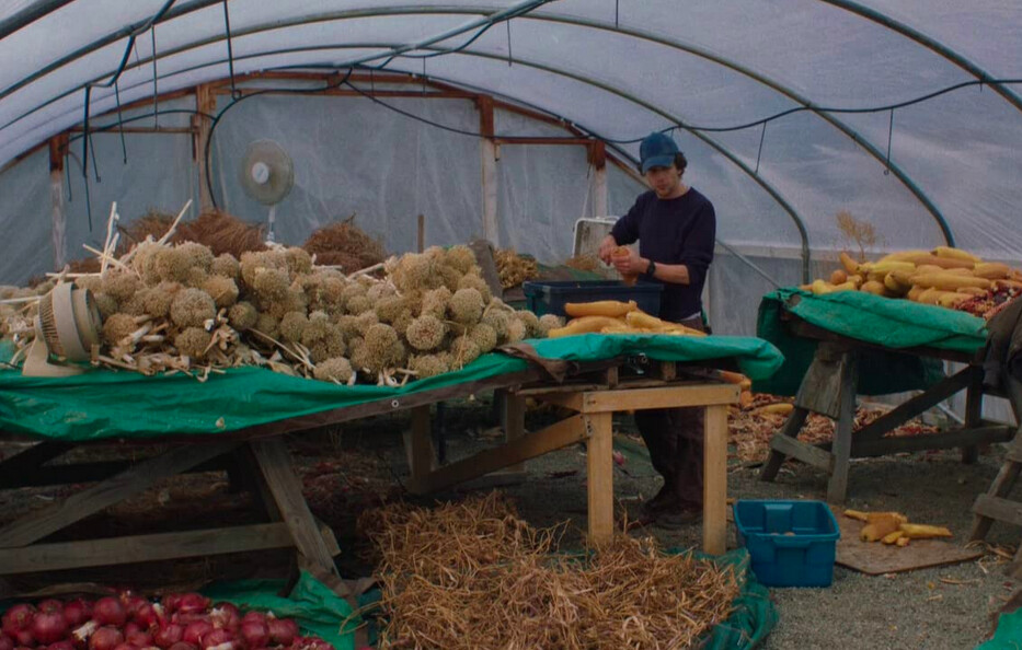 a man sorting vegetables in a boat in Night Moves