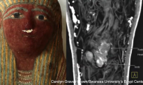Infant-sized Ancient Egyptian Sarcophagus Found to Contain Mummified Foetus