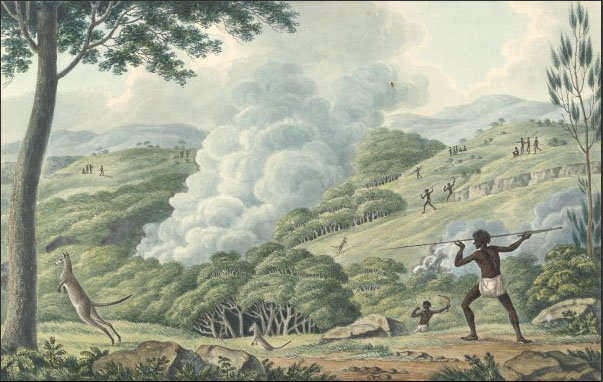 Aborigines using fire to hunt kangaroos in Joseph Lycett's 'Drawings of Aborigines and scenery' (1820) (National Library of Australia)
