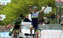 Weening Wins Giro d'Italia Stage Nine for Orica GreenEdge