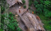 Amazon Tribes Safe With Google Earth Images