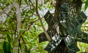 Discarded Cell Phones to Help Fight Rainforest Poachers, Loggers in Real-Time
