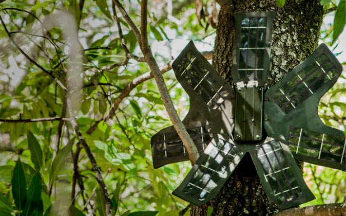 RFCx device. (Courtesy of Rainforest Connection)