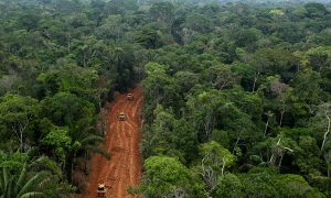 Oil Drilling Contaminating the Amazon Rainforest