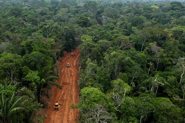 National Geographic photos show an illegal road within Ecuador's Yasuni National Park. (Photo copyright of Karla Gachet)