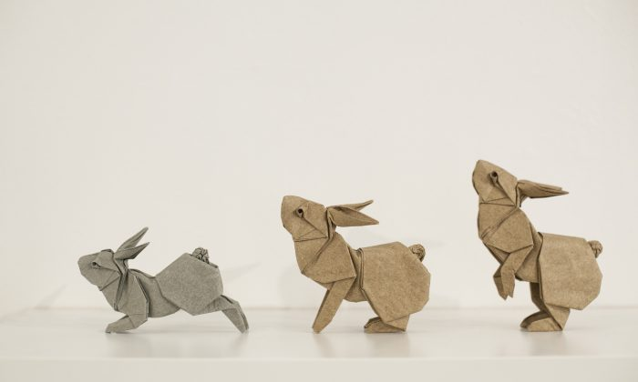"""""""Rabbits in Motion"""" by Ronald Koh, folded by Ng Boon Choon, Singapore/Malaysia; at the Surface to Structure origami exhibit at Cooper Union, NYC, June 19. (Samira Bouaou/Epoch Times)"""