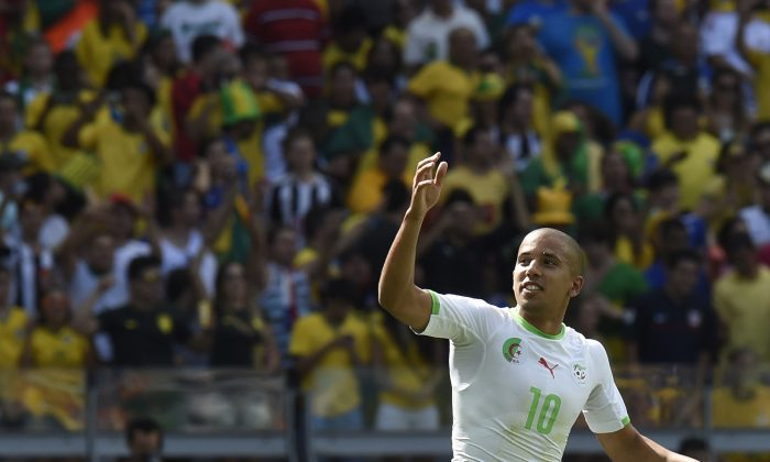 Algeria's forward Sofiane Feghouli celebrates after scoring his team's first goal during the Group H football match between Belgium and Algeria at the Mineirao Stadium in Belo Horizonte during the 2014 FIFA World Cup on June 17, 2014. (PHILIPPE DESMAZES/AFP/Getty Images)