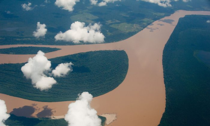 The Amazon rainforest is one of the largest areas of wilderness in the world.(Christophe Simon/AFP/Getty Images)
