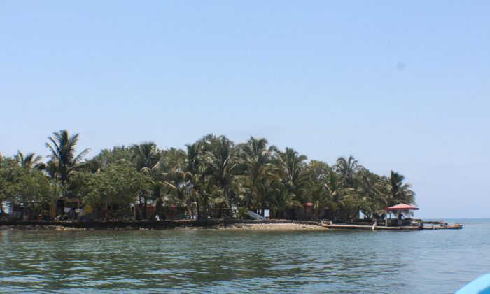 Tom Owen's Caye in the Sapodilla Cayes of Belize. A one acre picturesque island. (Myriam Moran copyright 2014)