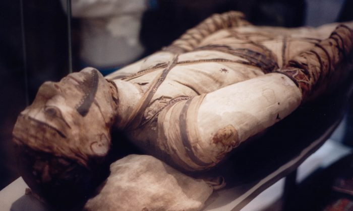 An Egyptian mummy at the British Museum in London. (Wikimedia Commons)