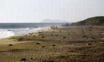 A Balanced Beach: Summer Returns to Cape Hatteras