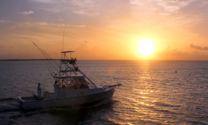 Sunrise over the Atlantic Ocean as sport fishing boats leave Whale Harbor. (Myriam Moran copyright 2014)