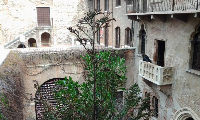 If you stay at the Sogno di Giulietta boutique hotel, you'll be able to view the balcony from your hotel room well away from the crowds. In the evening the courtyard is closed to the public and is beautifully quiet. (Lorenza Bacino)