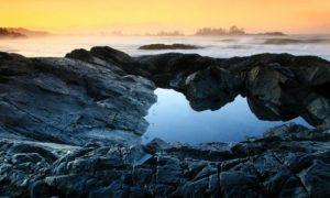 Pacific Rim's Coastal Wilderness, Vancouver Island