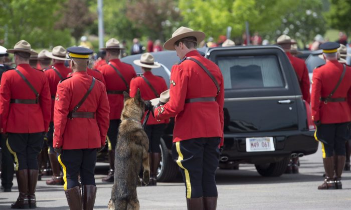 An officer holds Const. David Ross's Stetson while Ross's dog Danny sniffs it at a funeral procession in Moncton on June 10, 2014 for Ross and two other RCMP officers who were killed on duty. (The Canadian Press/Andrew Vaughan)