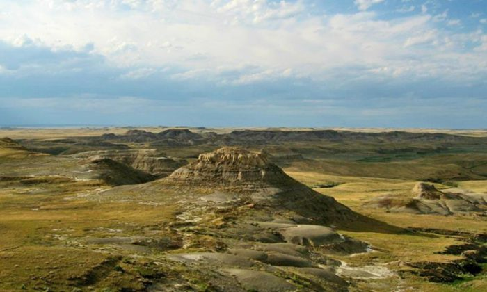 Badlands in Grasslands National Park. (McGill University)