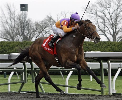 In this April 4, 2014 file photo, Robby Albarado rides Medal Count to victory in the Transylvania Stakes horse race at Keeneland in Lexington, Ky. Medal Count got the first post position at the Belmont Stakes. (AP Photo/Garry Jones)