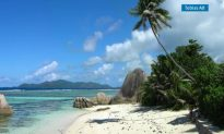 Visit Paradise in Indian Ocean (Video)