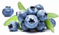 Wild Blueberries Improve Vascular Function