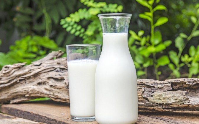 Grass-fed raw milk contains healthy bacteria that benefit your gut health; beneficial raw fats, amino acids, as well as proteins, vitamins, and minerals—all in highly bioavailable forms. (Shutterstock*)